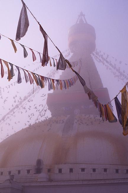 NEPAL, KATHMANDU, BOUDHNATH, TIBETAN STUPA (TEMPLE) IN FOG, PRAYER FLAGS, PIGEONS