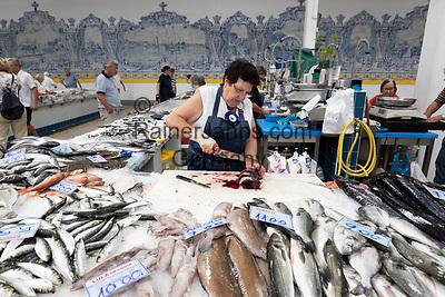 Portugal, Lissabon Region, Setubal: Fischstand in der Markthalle Mercado do Livramento   Fresh fish stall inside the Mercado do Livramento taken in the morning, Avenida Luisa Todi, Setubal; Lisbon region; Portugal, Europe