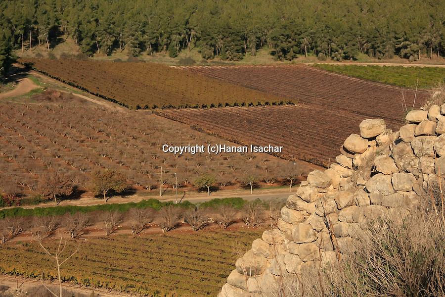 Israel, Shephelah, a view from Tel Lachish