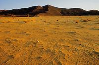 - northern Sudan, desert of Bayuda....- Sudan settentrionale, deserto di Bayuda