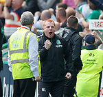 13.05.2018 Hibs v Rangers: Neil Lennon celebrates as Hibs go 3-0 up