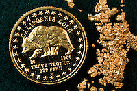 GOLD<br /> American Gold Bear Coin with Gold Flakes<br /> Elemental gold coin with 99.99 assay on weight, numbered. A highly sought after precious metal, gold is dense, soft, shiny and the most malleable and ductile pure metal known.
