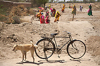 Women working along the Road, Rajasthan India, a dog is having a pee on a bike