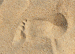 Foot prints in the sand, foot prints, Foot prints sand, sandy foot prints, Foot Prints in the sand with Atlantic surf rolling in Virginia Beach Virginia, Foot print in sand, Child foot in the sand, Feet, many feet, toe's, eight feet, feet on a bed, many toe's, feet, toe,