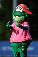 Mascot Reedy Rip'It  of the Greenville Drive in a game against the West Virginia Power on Sunday, May 11, 2014, at Fluor Field at the West End in Greenville, South Carolina. Greenville won, 9-6. (Tom Priddy/Four Seam Images)