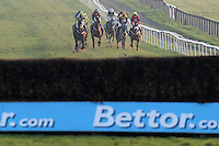 The field runs down the hill during the @Plumptonraceday Twitter Handicap Chase - Horse Racing at Plumpton Racecourse, East Sussex - 12/03/12 - MANDATORY CREDIT: Gavin Ellis/TGSPHOTO - Self billing applies where appropriate - 0845 094 6026 - contact@tgsphoto.co.uk - NO UNPAID USE.