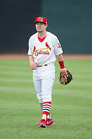 Christian Muscarello (35) of the Johnson City Cardinals warms up in the outfield prior to the game against the Elizabethton Twins at Cardinal Park on July 27, 2014 in Johnson City, Tennessee.  The game was suspended in the top of the 5th inning with the Twins leading the Cardinals 7-6.  (Brian Westerholt/Four Seam Images)