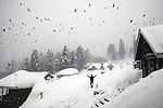 A visitor walks through a snowstorm with birds circling above at the Highlands Park Hotel. The ski fields at Gulmarg in the disputed northern Indian state of Kashmir , that are 60km's from Srinagar are drawing tourists from all over the world for the cheap skiing and Indian experience.