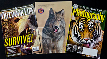 OutdoorLife and Photography Magazine