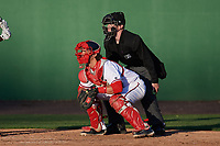 Umpire Thomas Roche and Potomac Nationals catcher Taylor Gushue (32) during the first game of a doubleheader against the Salem Red Sox on May 13, 2017 at G. Richard Pfitzner Stadium in Woodbridge, Virginia.  Potomac defeated Salem 6-0.  (Mike Janes/Four Seam Images)