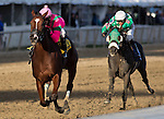 LAUREL, MARYLAND - OCTOBER 22: Admiral's War Chest #4, ridden by Taylor Hole, wins the Maryland Million Classic on Maryland Million Day at Laurel Park on October 22, 2016 in Laurel, Maryland. (Photo by Jesse Caris/Eclipse Sportswire/Getty Images)