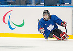 Anthony Gale, Sochi 2014 - Para Ice Hockey // Para-hockey sur glace.<br />