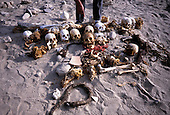 Nazca, Peru. Human skulls, bones, skin and hair on sand of desert outside Nazca with hand pointing at them.