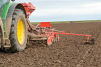 Drilling winter wheat following dutch white cabbage - Lincolnshire, November