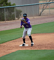Amael Amador - Colorado Rockies 2020 spring training (Bill Mitchell)