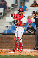 Johnson City Cardinals catcher Chris Rivera (12) on defense against the Bristol Pirates at Howard Johnson Field at Cardinal Park on July 6, 2015 in Johnson City, Tennessee.  The Pirates defeated the Cardinals 2-0 in game one of a double-header. (Brian Westerholt/Four Seam Images)