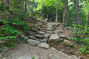 Stonework along Valley Way in the New Hampshire White Mountains during the summer months.