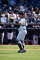 New York Yankees catcher Josh Thole (30) during a Spring Training game against the Toronto Blue Jays on February 22, 2020 at the George M. Steinbrenner Field in Tampa, Florida.  (Mike Janes/Four Seam Images)