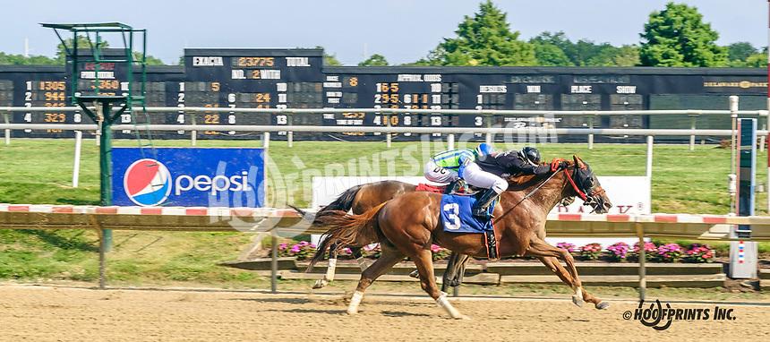 Pharaoh's City winning at Delaware Park on 8/3/19