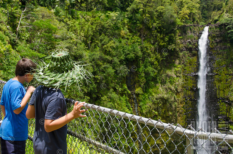 Two young boys, one wearing a woven palm frond hat, look at 'Akaka Falls; the falls plummet 442 feet along a 0.4-mile loop hiking trail through a tropical rainforest in 'Akaka Falls State Park, about 10 miles north of Hilo, Big Island.