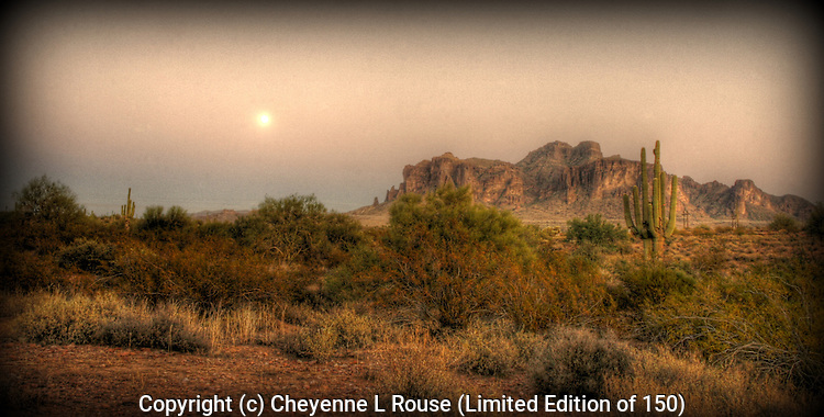 Full Moon Desert - Sonoran Desert, AZ - This photograph is a Limited Edition of 150.