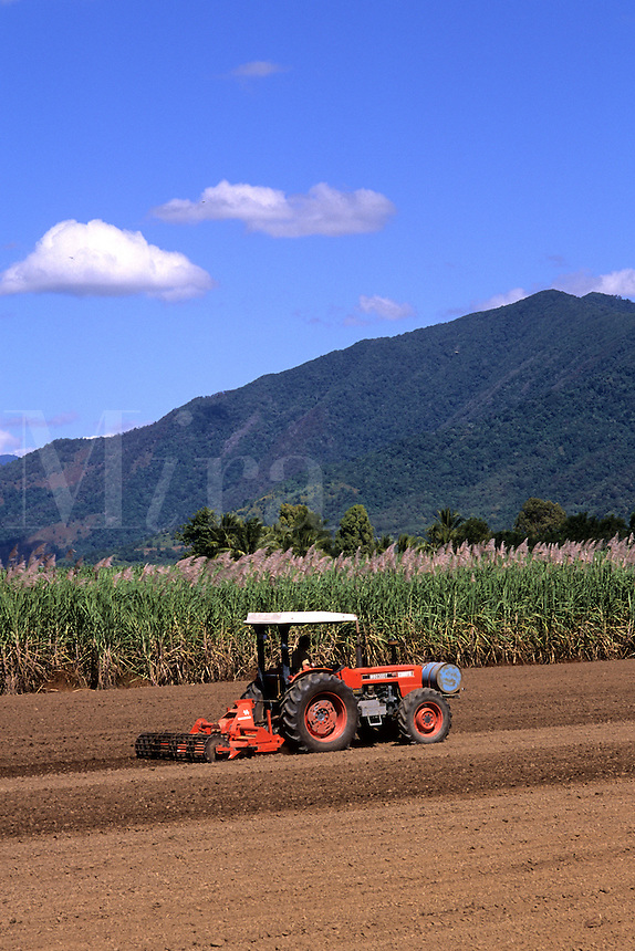Tractor Plowing Fields at Local Sugar Farm Near Rex Lookout in Cairns Australia Queensland