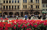 Augustiner Restaurant facade and tables set on broad pedestrian plaza; people eating or passing by; profusion of red tulips in planters. Munich Bavaria Germany.