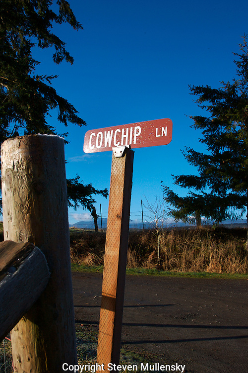 Cowchip lane is a small road off Hiway 19 in Chimacum, Washington. The area is surrounded by pastures with dairy cows and steers so the name is appropriate.