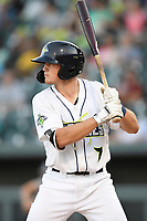 First baseman Brian Sharp (7) of the Columbia Fireflies bats in a game against the Rome Braves on Saturday, August 17, 2019, at Segra Park in Columbia, South Carolina. Rome won, 4-0. (Tom Priddy/Four Seam Images)