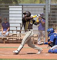 Jordy Barley - San Diego Padres 2021 spring training (Bill Mitchell)