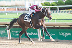 November 27, 2020: Silver State, trained by Steve Asmussen, wins Race 3, an allowance optional claiming at Churchill Downs in Louisville, Kentucky on November 27, 2020. Jessica Morgan/Eclipse Sportswire.