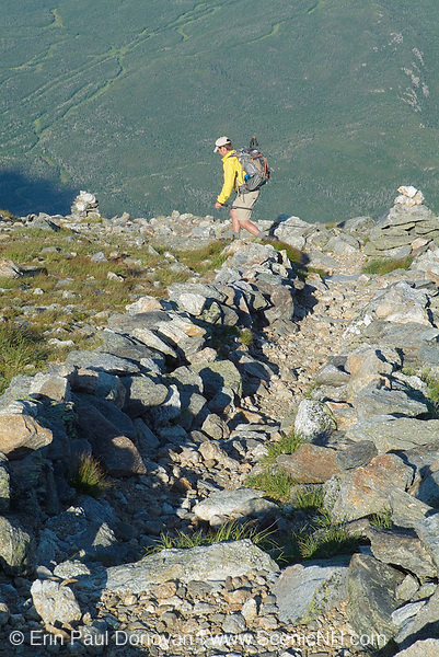 Hiker descending Boott Spur Trail in the White Mountains, New Hampshire. Afternoon sun reflects off the Wildcat Ski Mountain. A scree wall is in view. Scree walls are built on the edge of trails to discourage hikers from going off trail. Building these small walls helps protect the fragile alpine habitat.