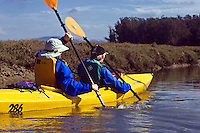 Eco-Tourists KAYAKING along the banks of ELKHORN SLOUGH - MOSS LANDING, CA