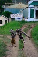 TANZANIA Tanga, Katani Ltd. Biogas Plant in Hale, the remaining fibres and pulp from sisal production is used for fermentation to produce biogas, in contrast women carry firewoods / TANSANIA Tanga, Katani Biogasanlage, aus den resten der Sisal Produktion wird Biogas gewonnen, im KOntrast Frauen tragen Feuerholz