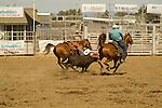 Calf roping, Deschutes County Fair and Rodeo, Central Oregon