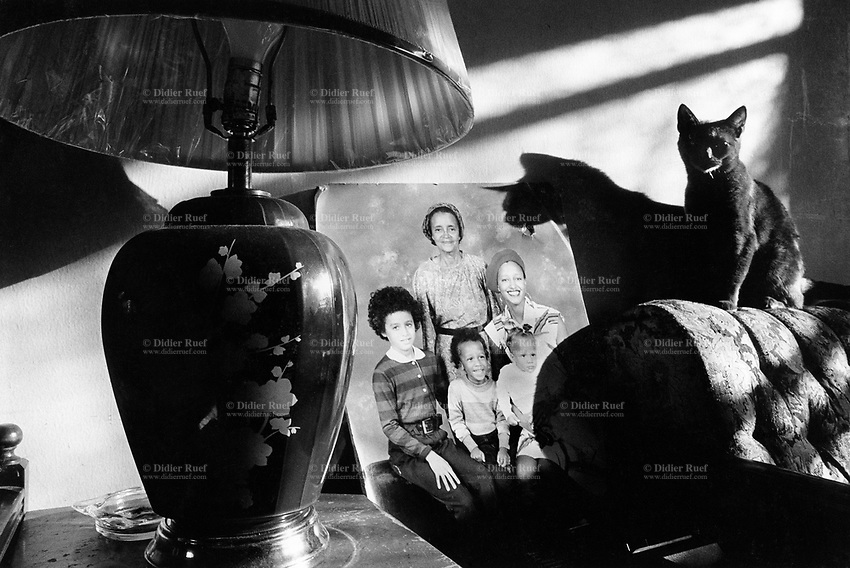 """USA. New York City. Spanish Harlem. Puerto Rican family. Family portrait with three generations: the grandmother Juanita, the mother Nina, the sons Carlos, Willie and a daughter Sala. Cat and shadow. The family lives below the poverty line and receives public assistance (AFDC, Home Relief, Supplemental Security Income and Medicaid). The family resides in units managed by the New York City Housing Authority (NYCHA) which provides housing for low income residents. NYCHA administers rental apartments in facilities, popularly known as """"projects"""". Spanish Harlem, also known as El Barrio and East Harlem, is a low income neighborhood in Harlem area. Spanish Harlem is one of the largest predominantly Latino communities in New York City. 15.10.86 © 1986 Didier Ruef ."""
