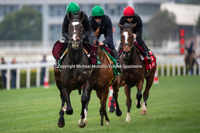 SHA TIN, HONG KONG – December 4: Mount Everest(Left), Anthony Van Dyck (Middle) & Magic Wand (Last) at trackwork on December 5 at Sha Tin Race Course in Hong Kong before starting in the Longines Hong Kong Vase. Michael McInally/Eclipse Sportswire/CSM