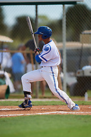 Ej Martinez during the WWBA World Championship at the Roger Dean Complex on October 18, 2018 in Jupiter, Florida.  Ej Martinez is a catcher from Guelph, Ontario who attends Our Lady of Lourdes Catholic High School.  (Mike Janes/Four Seam Images)