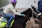 LOUISVILLE, KY -APR 25: Kentucky Derby hopeful Bravazo gets a pat from exercise rider Danielle Rosier before working out at Churchill Downs, Louisville, Kentucky. (Photo by Mary M. Meek/Eclipse Sportswire/Getty Images)