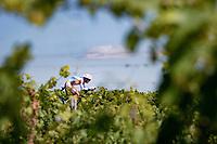 Cristián Rodríguez (ESP/TotalEnergies)<br /> <br /> Stage 20 (ITT) from Libourne to Saint-Émilion (30.8km)<br /> 108th Tour de France 2021 (2.UWT)<br /> <br /> ©kramon