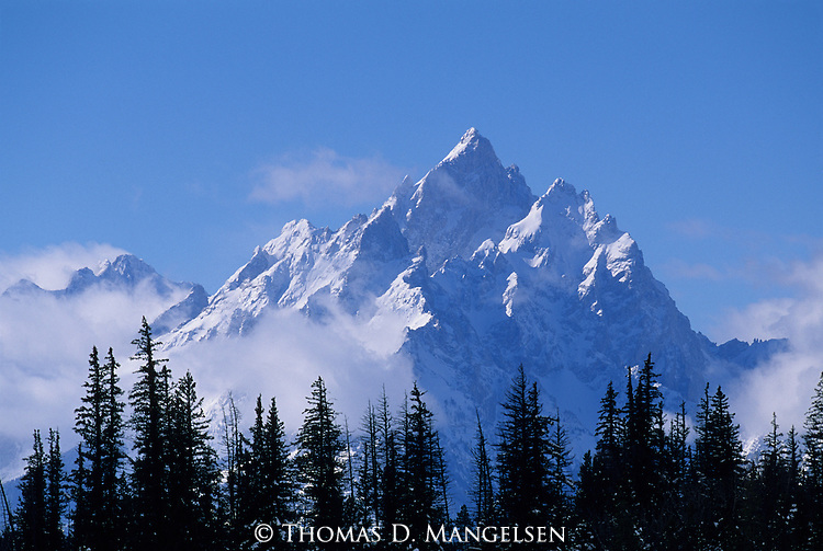 Cathedral Group of the Teton Range in winter, in Grand Teton National Park, Wyoming.