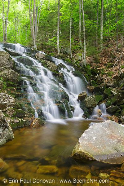 """Cascade on Walker Brook in North Woodstock, New Hampshire during the spring months. Some locals refer to this series of cascades on Walker Brook as """"Airmen Falls"""", but this is not the official name of them."""