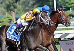 Rock Fall, ridden by Javier Castellano, wins the Alfred G. Vanderbilt Handicap on August 1, 2015 at Saratoga Race Course in Saratoga Springs (Sophie Shore/Eclipse Sportswire)