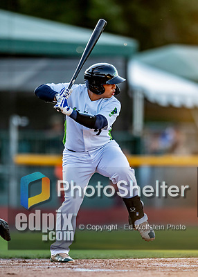 29 August 2019: Vermont Lake Monsters catcher Jorge Gordon in action during a game against the Connecticut Tigers at Centennial Field in Burlington, Vermont. The Lake Monsters fell to the Tigers 6-2 in the first game of their NY Penn League double-header.  Mandatory Credit: Ed Wolfstein Photo *** RAW (NEF) Image File Available ***