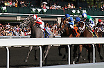 April 13, 2014: Ready to Act and jockey, Javier Castellano win the 29th running of The Beaumont Presented by Keeneland Select Grade 2 $200,000 at Keeneland racecourse for owner Klaravich Stables and William H. Lawrence and trainer Chad Brown.  Candice Chavez/ESW/CSM
