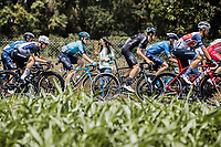Tiesj Benoot (BEL/DSM) in the peloton<br /> <br /> Stage 4 from Redon to Fougiéres (150.4km)<br /> 108th Tour de France 2021 (2.UWT)<br /> <br /> ©kramon