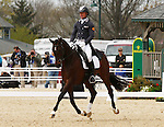 April 24, 2014: Mensa G and Michael Pollard lead the way on the first day of Dressage at the Rolex Three Day Event in Lexington, KY at the Kentucky Horse Park.  Candice Chavez/ESW/CSM
