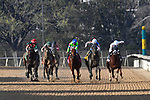 HOT SPRINGS, AR - MARCH 17:  Essex Handicap. at Oaklawn Park on March 17, 2018 in Hot Springs, Arkansas. (Photo by Ted McClenning/Eclipse Sportswire/Getty Images)