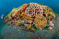 Corals and other marine life slowly recycle and transform man-made garbage and debris into small artificial reefs on the sandy underwater slopes of Lembeh Strait, Indonesia,