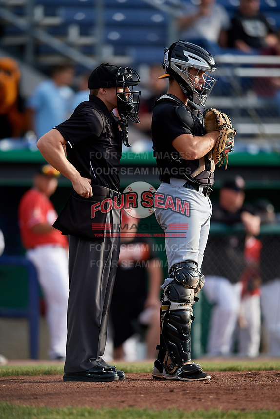 West Virginia Black Bears catcher Paul Brands (19) and home plate umpire Tyler Witte during a game against the Batavia Muckdogs on June 19, 2018 at Dwyer Stadium in Batavia, New York.  West Virginia defeated Batavia 7-6.  (Mike Janes/Four Seam Images)